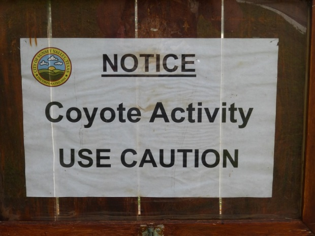 A sign in Sunset Valley, Texas, warning residents of coyote activity.