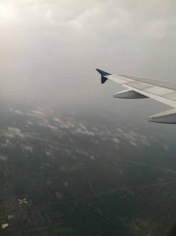 Friday Fictioneers photo prompt.  Copyright Rochelle Wisoff-Fields.  Photo looking out the window of an airplane at the fields below.