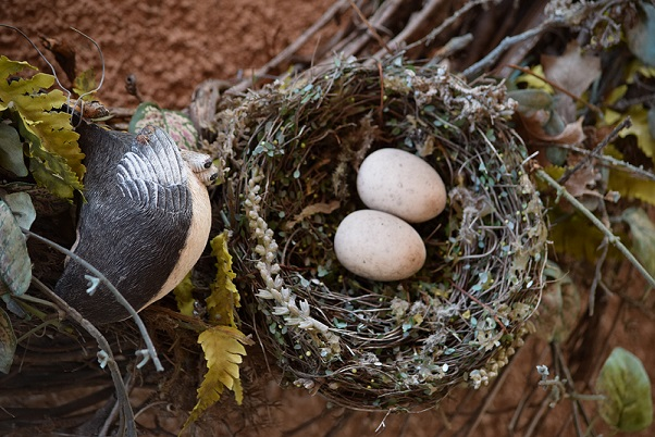 An artificial nest with two artificial bird eggs