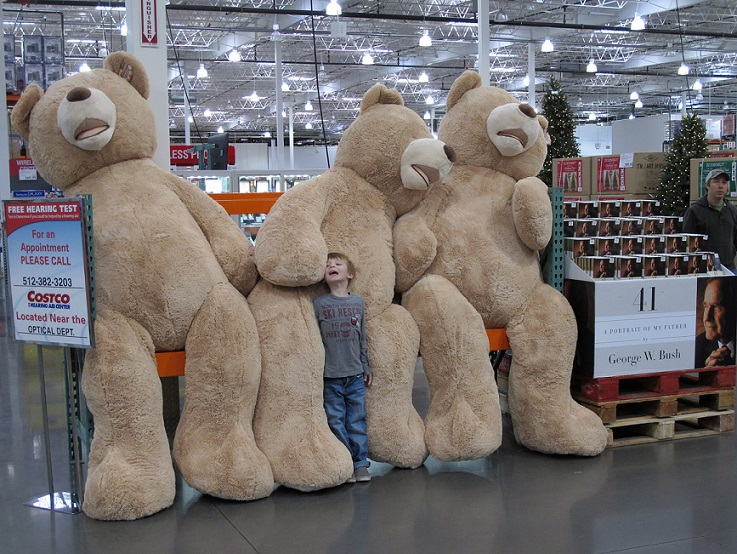 Three giant teddy bears and one boy, about 7 years old, standing in front of them, coming up to about to the waist of the teddy bear