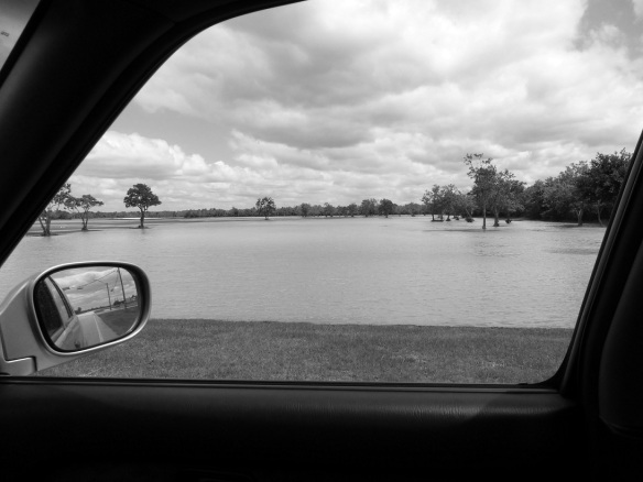 Flooding in George Bush Park, Houston, Texas, May 2014