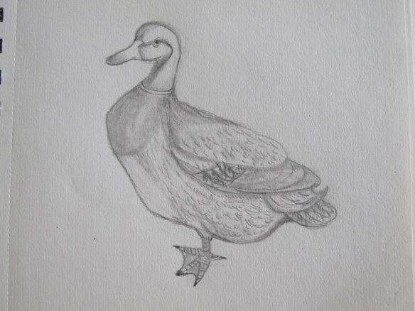 Sketch of a duck statuette