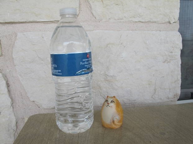 Cat trinket next to a water bottle, for size comparison