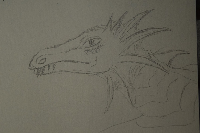 My first sketch of a dragon