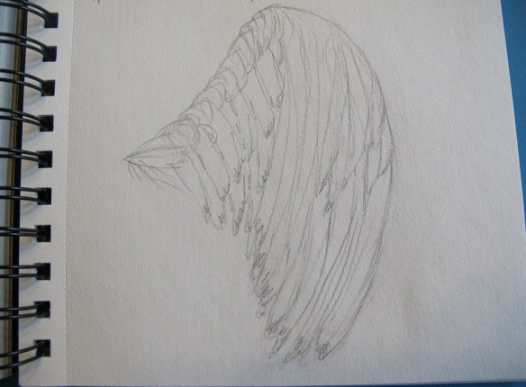 A sketch of an imaginary wing