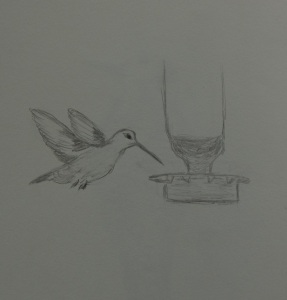 Sketch of a hummingbird flying to a feeder