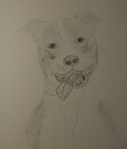 Sketch of Lyla the Smiling Dog