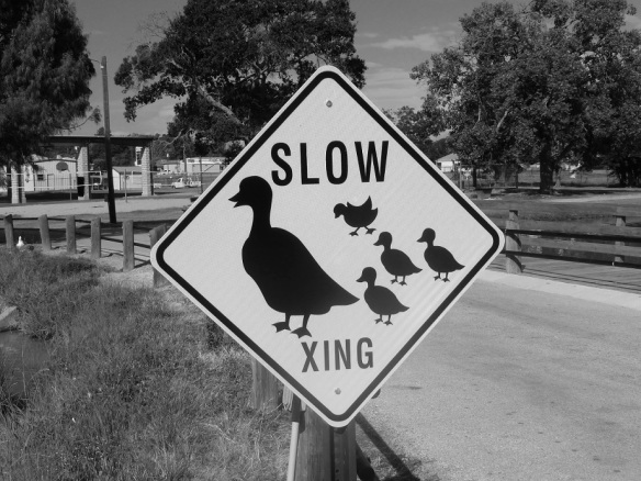 Sign: Slow, duck crossing