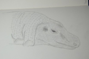Sketch of a Komodo Dragon at the Houston Zoo
