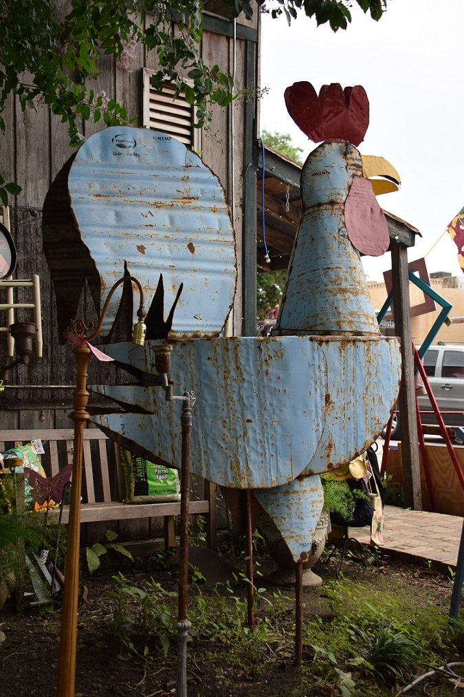 Blue Rooster at Bluwr Myles