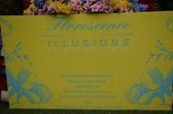 Florescence Illusions Houston (7)s