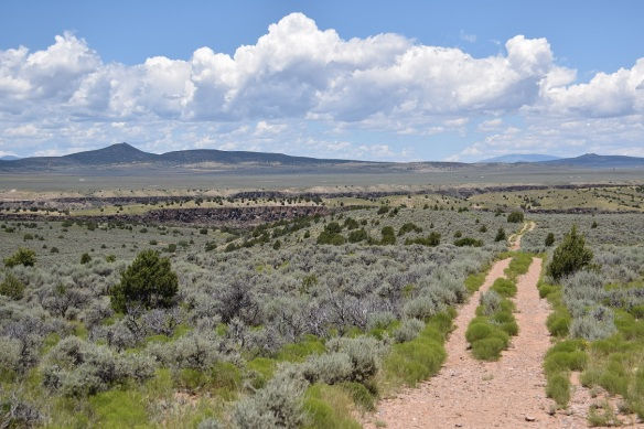 Taos Valley Overlook Trail