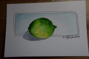 Lesson 1 Bonus Lime (3)s