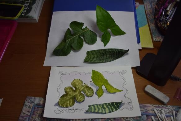 Lesson 2 Greens 3c1s