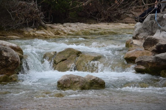 aa Barton Creek Greenbelt 2016 Feb (19)s