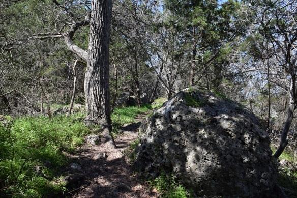 aa Tejas Park (45)s