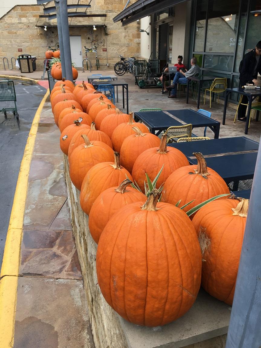 a-pumpkins-in-a-row-s