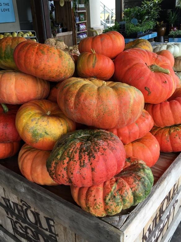 Pumpkins at Whole Foods Market Lamar (2)s