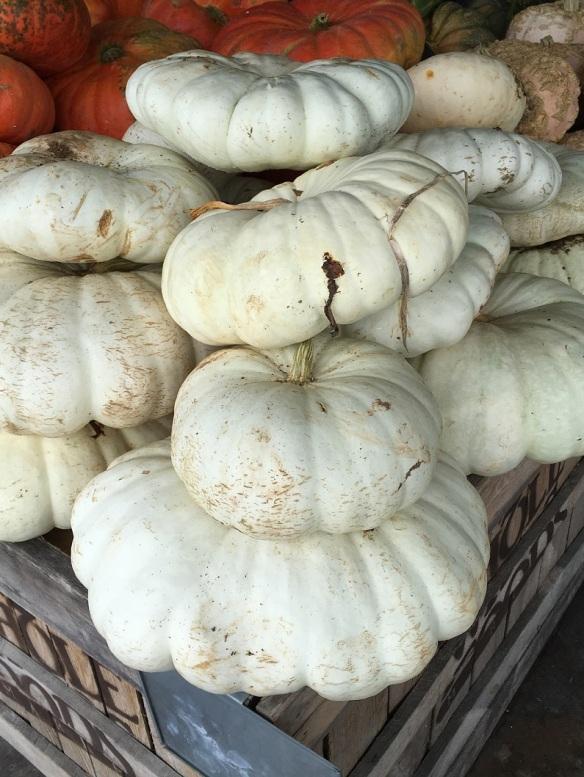 Pumpkins at Whole Foods Market Lamar (3)s