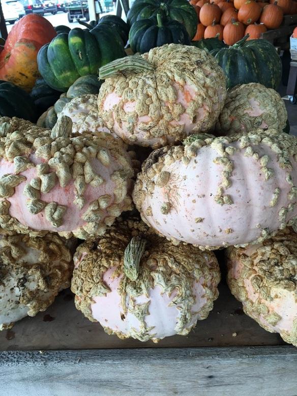 Pumpkins at Whole Foods Market Lamar (4)s