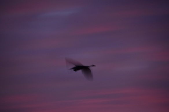 a-sunrise-2016-10-23-3s