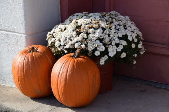a-pumpkin-and-flowers-s