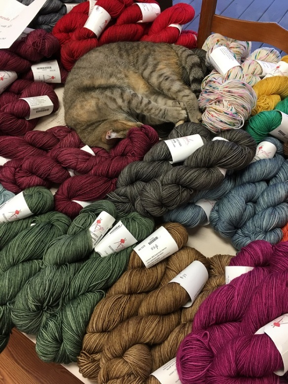 a-cat-and-yarn-3s