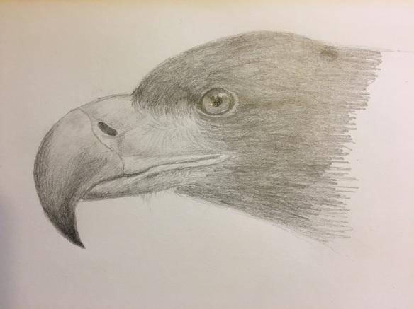 a-eagle-s