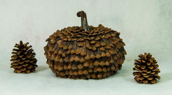 Pumpkin Pine Cone2