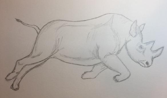 a-rhinoceros-4s