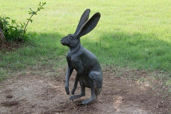 a Rabbit s2