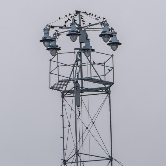 Moon Tower (2)