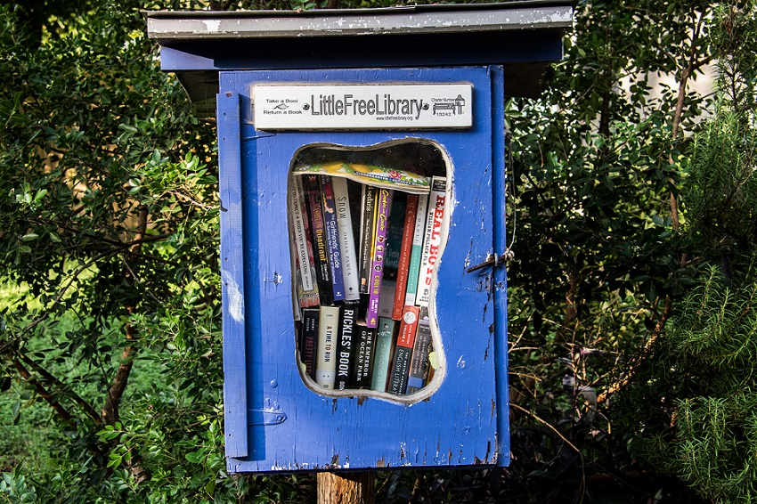 Little Lending Libraries (2)