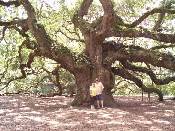 Angel Oak St James Island Charleston SC