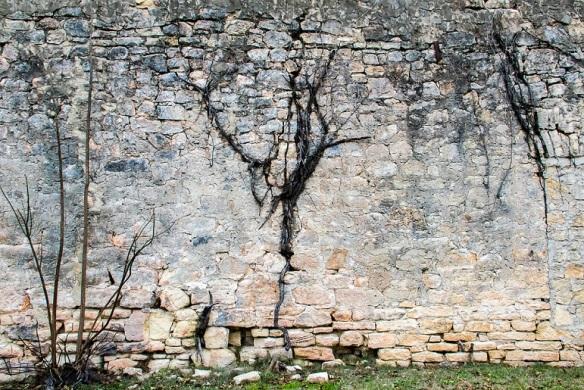 Blanco wall (1)