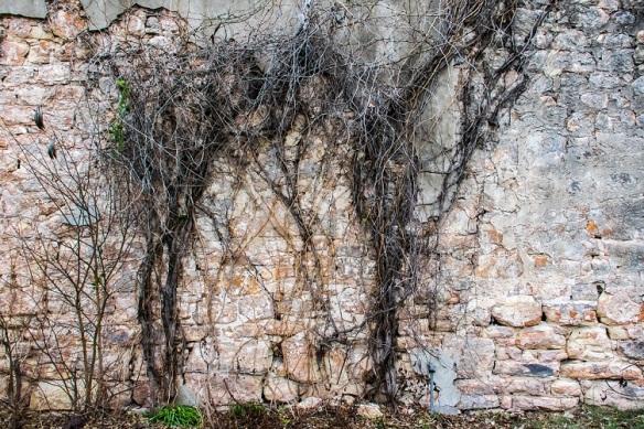 Blanco wall (3)