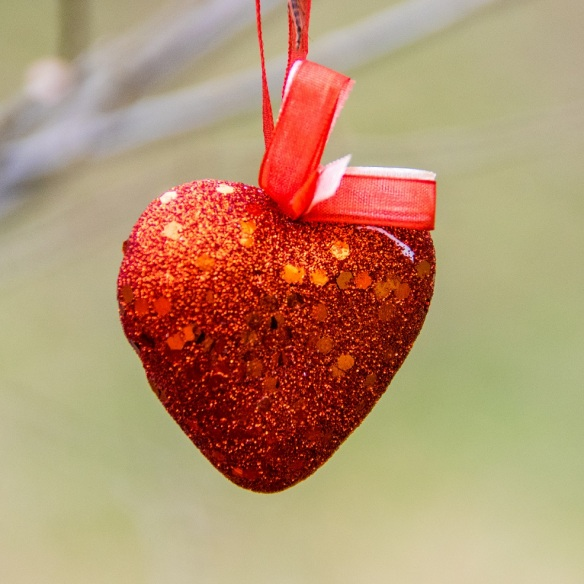 Heart hanging from a tree
