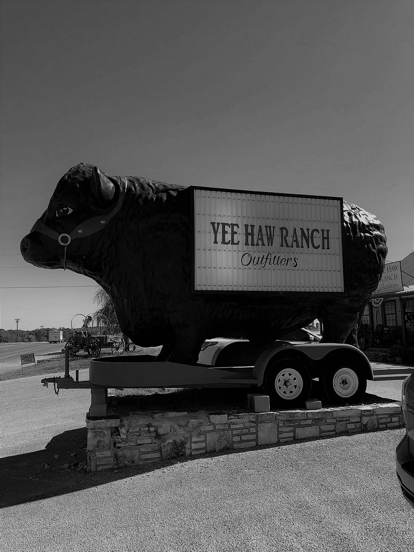Near Fredericksburg, Texas