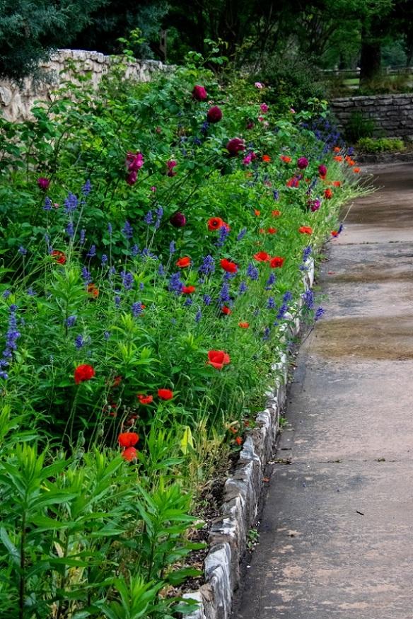 Sunken Gardens (34)