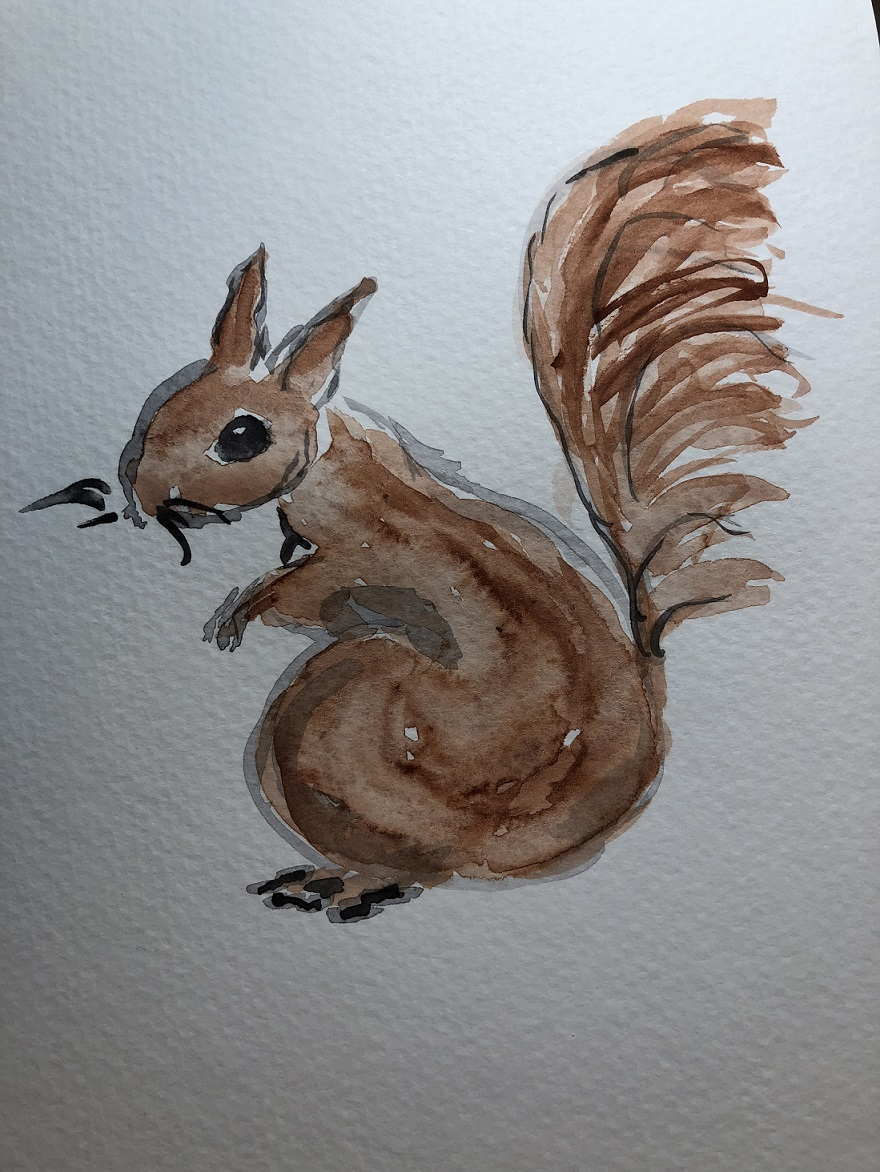 00s 15 Squirrel
