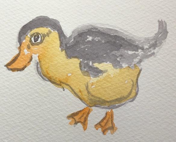 00s 26 Duckling
