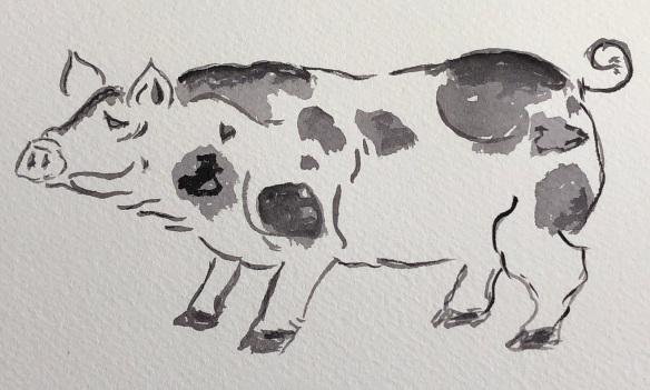 00s 28 Spot the Pig