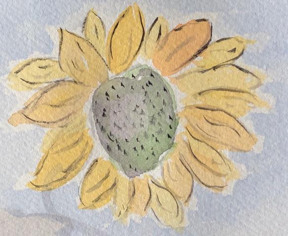 00s 30 Sunflower