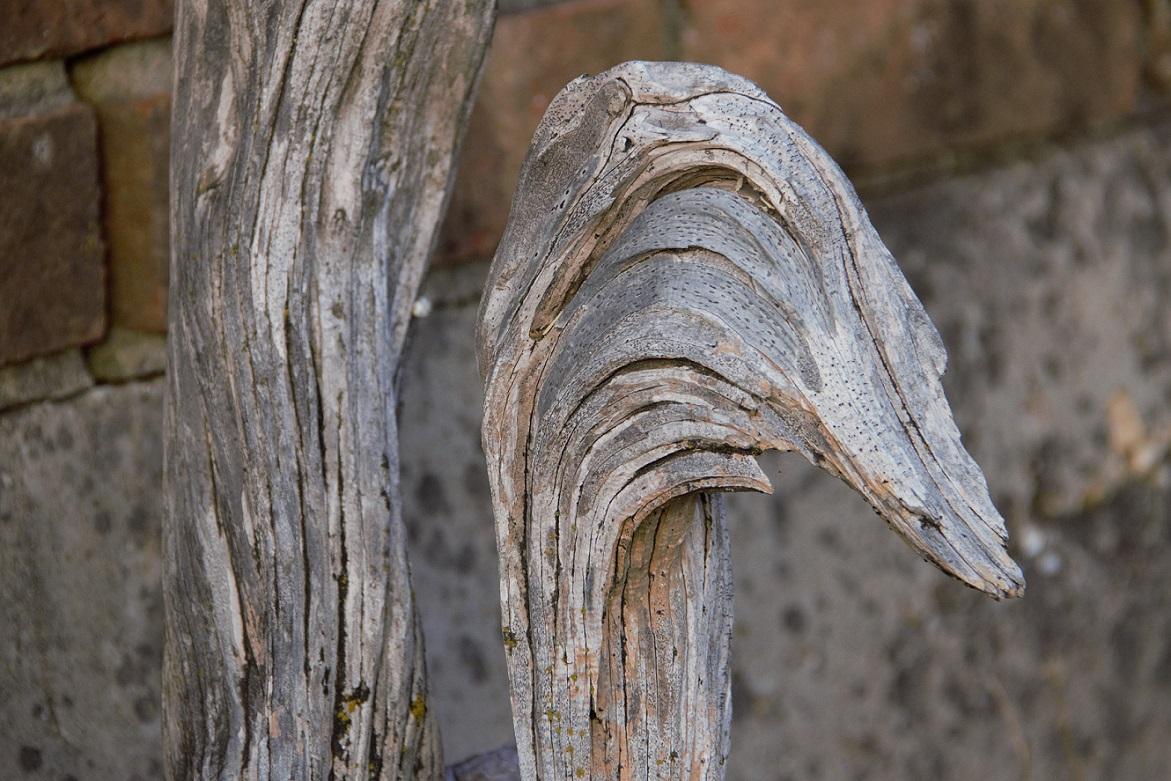 00s Wood duck shape (2)