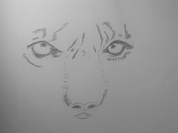 00s Tiger Eyes