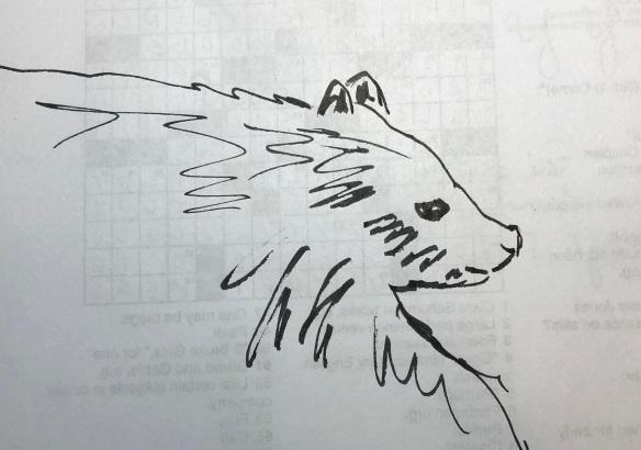00s Bear Sketch