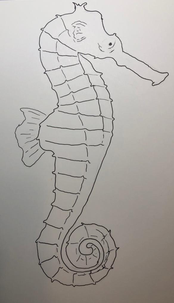 00s 02 Seahorse
