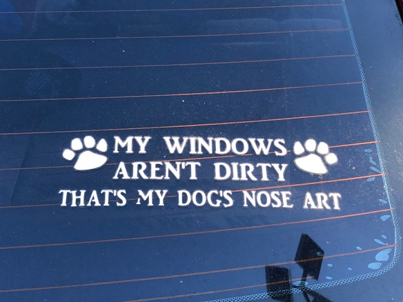00s Dog Nose Art